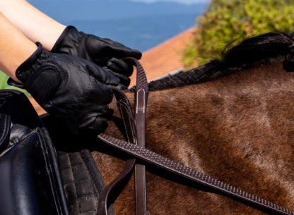 Gummizügel mit Handschuhe