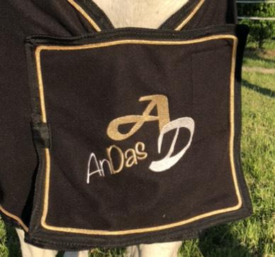ANDAS Logo