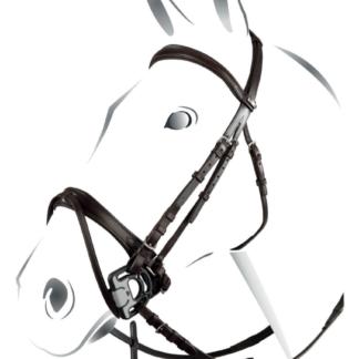 Equestro Jubilée Zaum